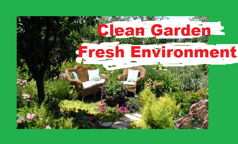 clean-garden-regularly