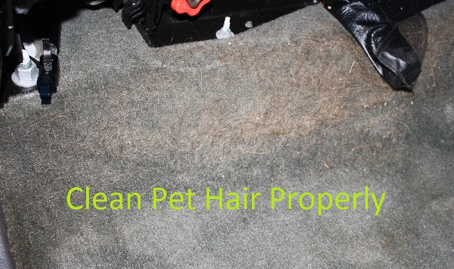 Clean_pet_hair_Carpet
