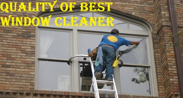 window-cleaning-professional